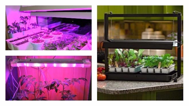 горизонтальные фитолампы для растений